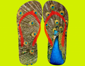 Flip flops with picture of beautiful peacock showing feathers