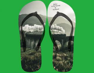 flip flop image with jacobite train