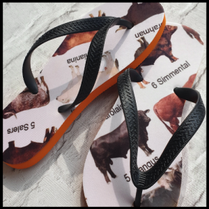 Flip Flops with images of cows