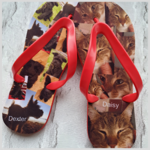 Flip Flops with images of cats and dogs