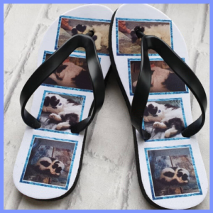 Snap-in Collage flip flops with images of cats