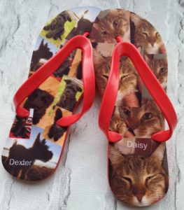 Flip Flops with images of a dog and cat